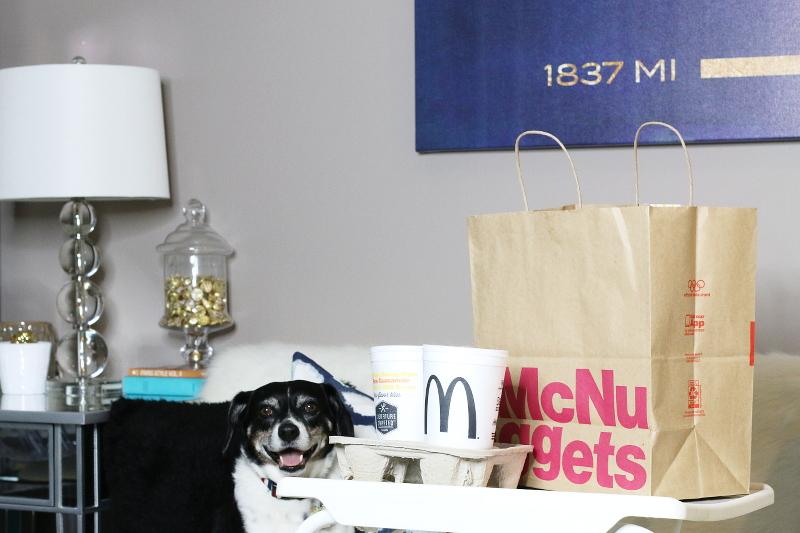 ubereats-mcdonalds-food-delivery-dog-3