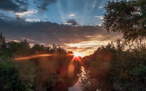 sfv crepuscularrays flare lariver lakebalboa lensflare losangeles nature sanfernandovalley skyclouds sun sunset trees water