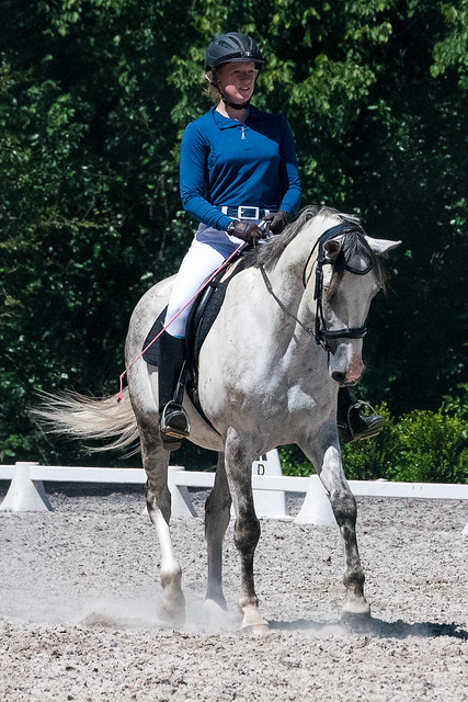 20170709 Grif Dressage Tests-29