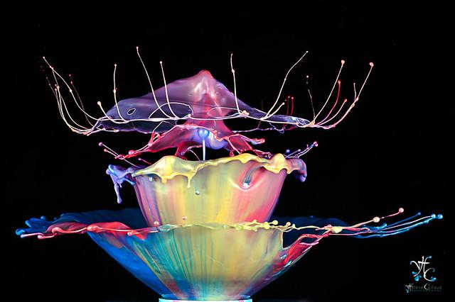 Liquid art - 1607