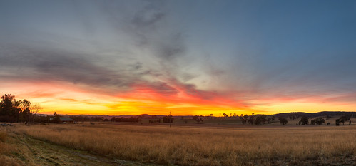 Wide Panorama: Winter Dusk Over Farmlands Near Mudgee , NSW