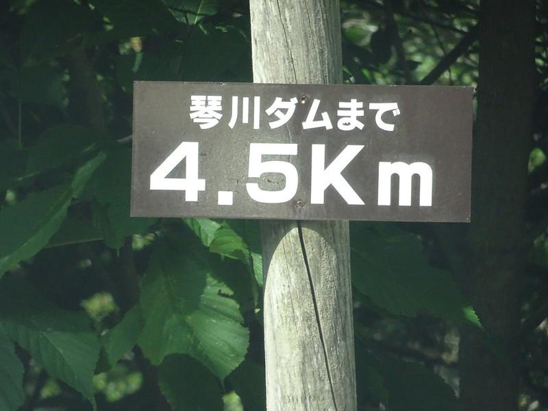 1-04-DSC02455mh