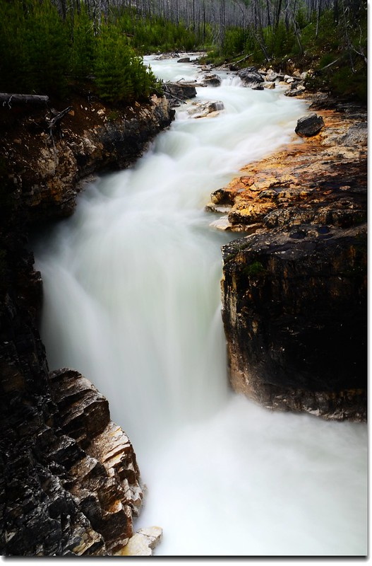 Marble Canyon, Kootenay National Park 6