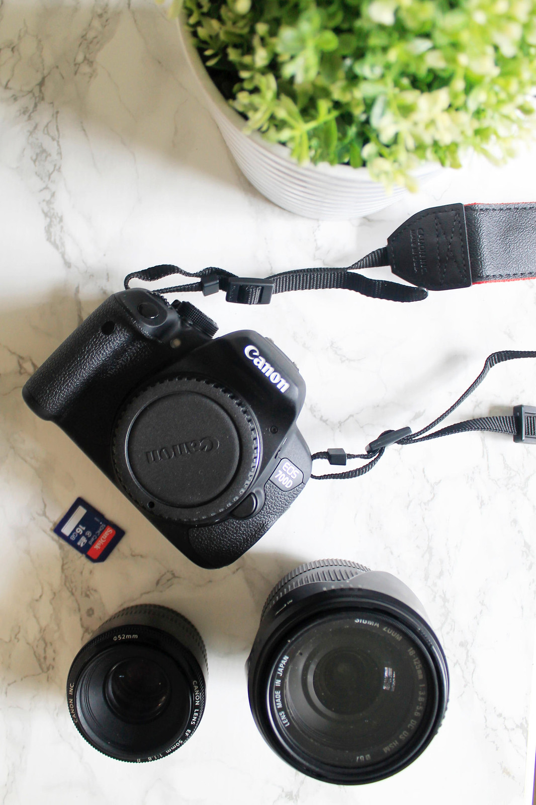 Best camera equipment for blogging travel fashion lifestyle