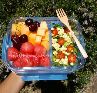 Bento Box Review: Smart Planet Home Pure Glass Bento | by sherimiya ♥