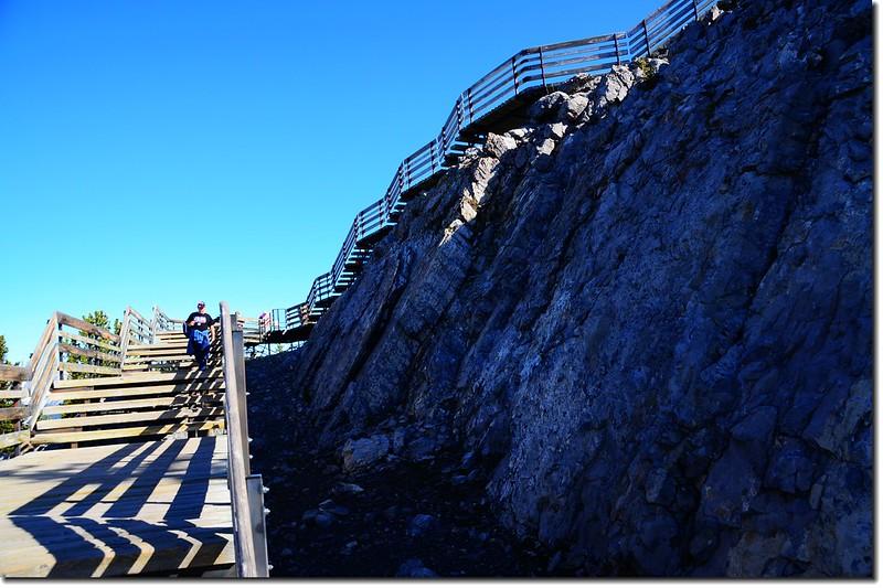 The boardwalk trails on the ridge