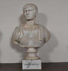 Caligula, Gustav III's Museum of Antiquities, Stockholm (16)