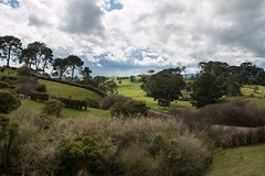 New Zealand Trip-793