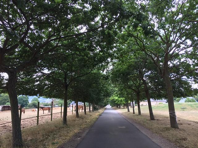 Hautot-sur-Seine22
