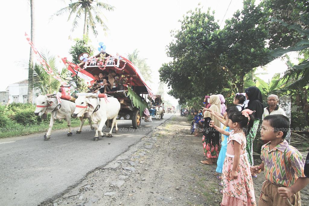 Festival Pegon, Berlebaran Di Atas Gerobak Sapi