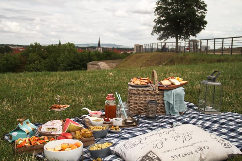 Sommer-Picknick-Erfurt-Petersberg