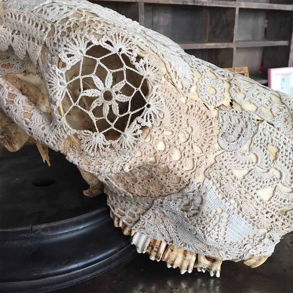 Expo Crânes d'anges « os et dentelles », 2017