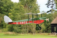 A Gathering of Moths at Old Warden
