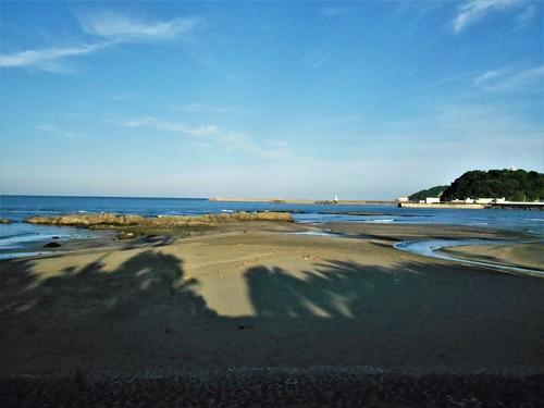 jp-aoshima-5 a 7 (3)