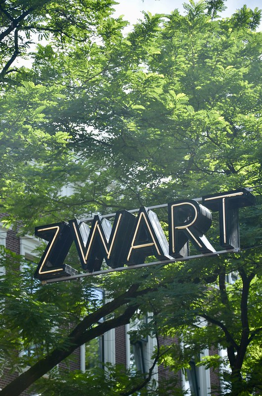 rotterdam citywalk