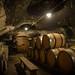 Cave de Bouzeron - Domaine Xavier Moissenet - Les champs de Themis