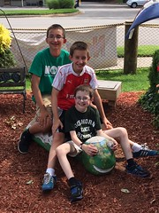Three cousins and the turtle