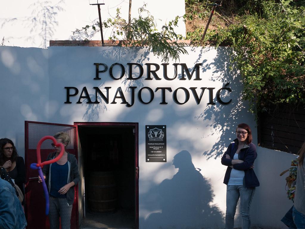 Podrum-Panajotovic-1020293