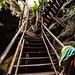 Cenote Kankirixche por Dooquie