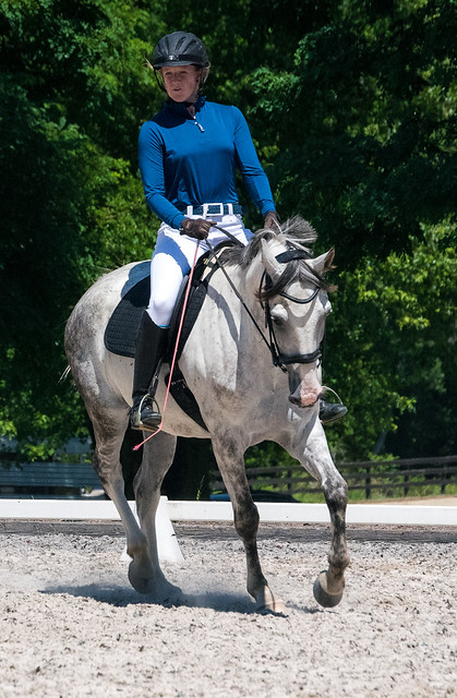 20170709 Grif Dressage Tests-19