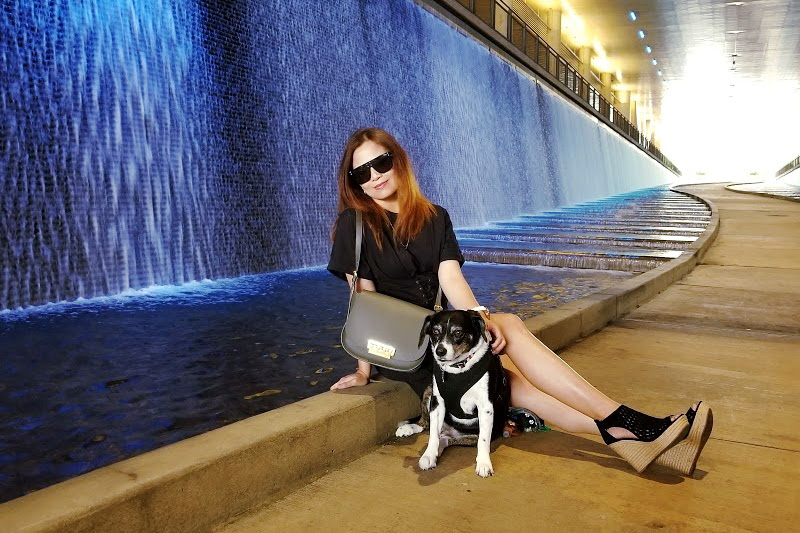 marc-fisher-wedge-sandals-zac-posen-bag-quay-sunglasses-louis-dog-3