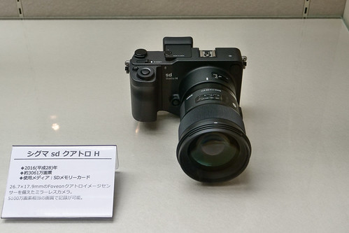 P1044330.jpg