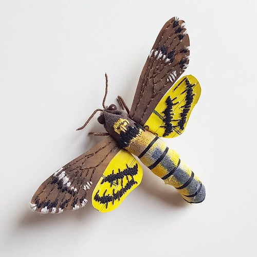 Paper Sculpture Death's-Head Hawk Moth by Kate Kato