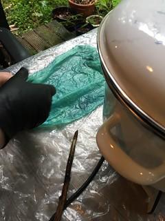 shibori indigo dyeing Wolop pleats