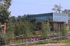 Lemur Building 7D2_2498