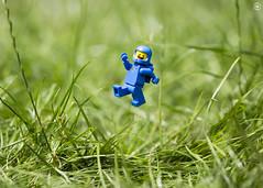 Benny Garden Jump