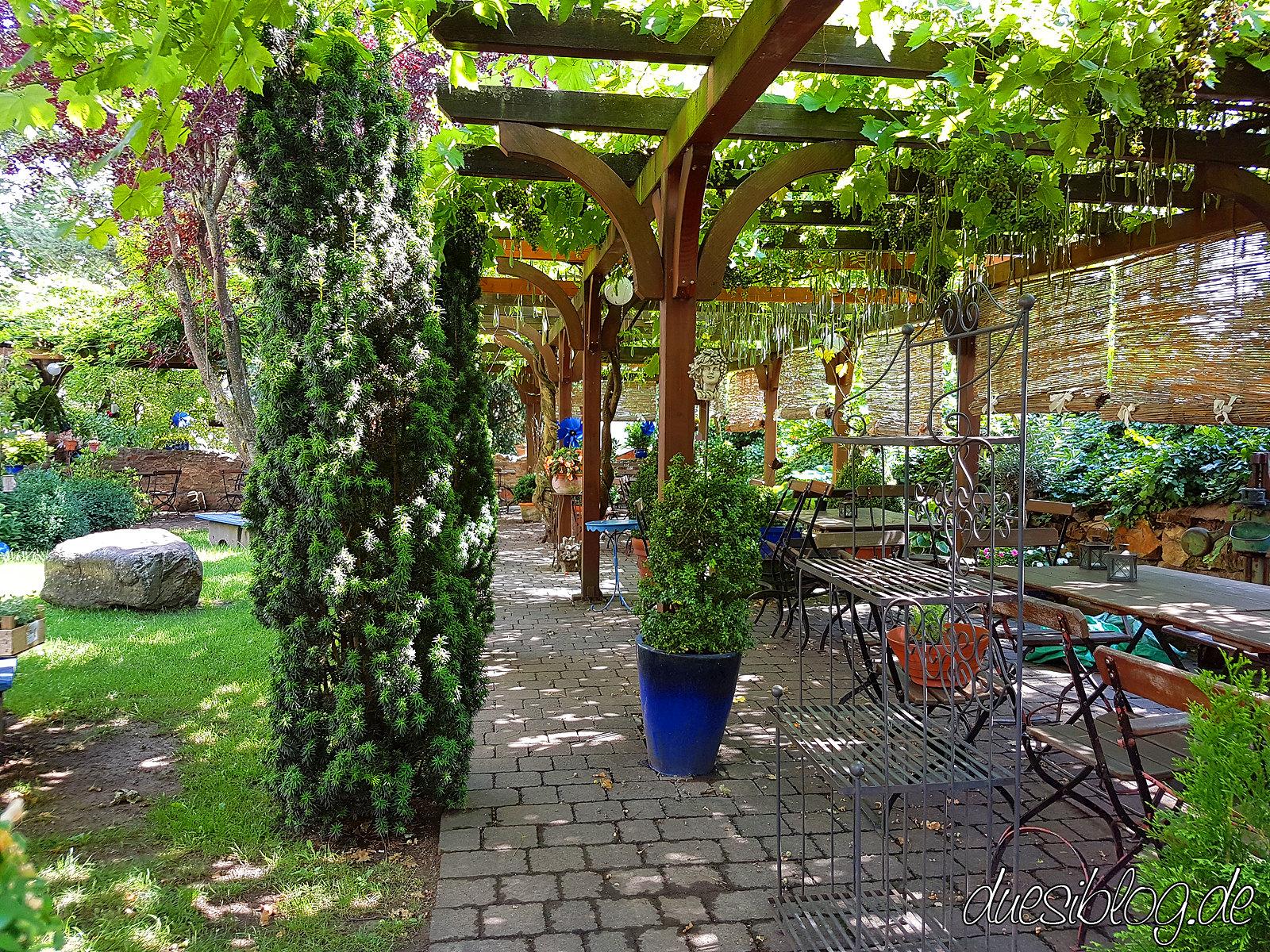 Ruedesheim vegan Rheingau Travelblog duesiblog 10