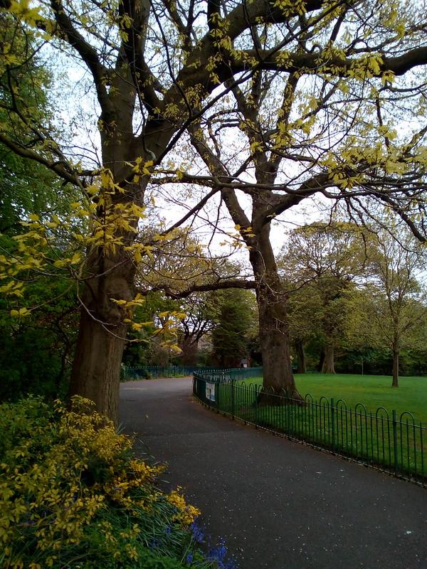 Jardín Botánico Belfast