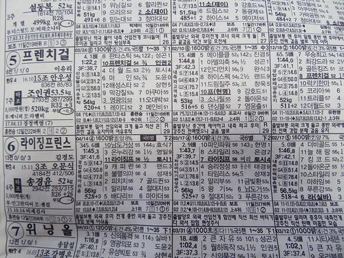 釜山慶南競馬場の馬柱