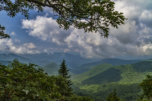 A little more of the Smokies