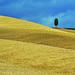 Toscane en jaune et bleu by Pat=H