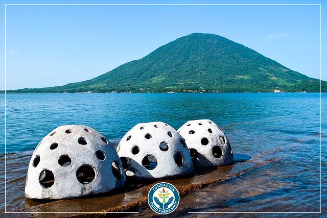 Lanzaron al Golfo de Fonseca 20 domos para arrecifes artificiales
