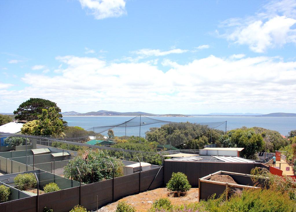 albany-discovery-bay-australian-wildlife-park-scenery