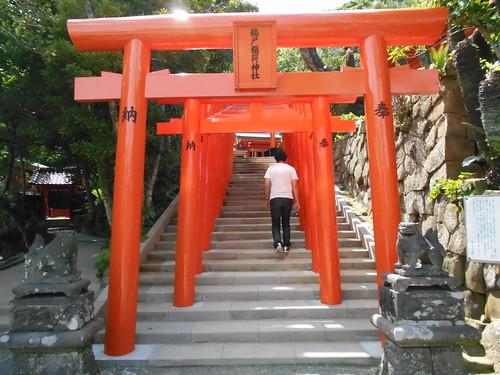 jp-aoshima-Udo-jingu (7)