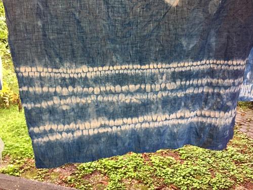 orinui shibori indigo dyeing Wolop