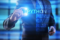 All You Need to Know about Python
