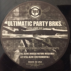 DJ GHETTO JIGGY & FUNKY CHILD PRESENTS:ULTIMATIC PARTY BRKS. VOLUME 02(LABEL SIDE-A)