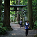 Hiking Through Towada Shrine