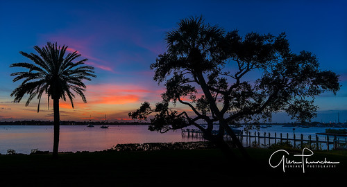 sony a7r2 sonya7r2 ilce7rm2 zeissfe1635mmf4zaoss fx fullframe scenic landscape waterscape nature outdoors sky clouds colors shadows silhouettes sunset tropical palmtrees beach harbor pier docks boats stuart florida southeastflorida martincounty