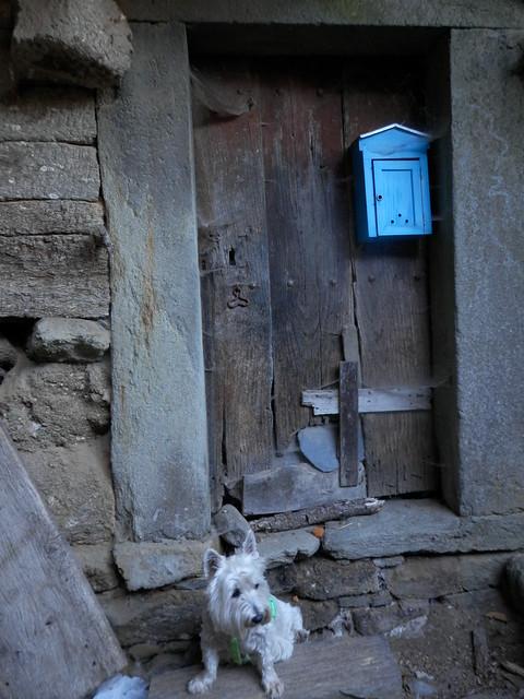 Puerta con buzón azul.