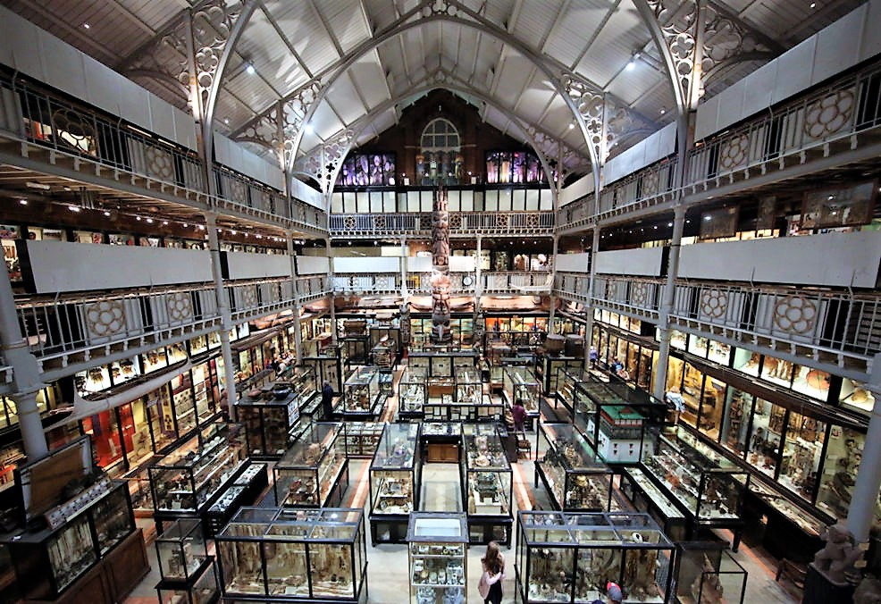 Pitt Rivers Museum, Oxford. Credit Geni