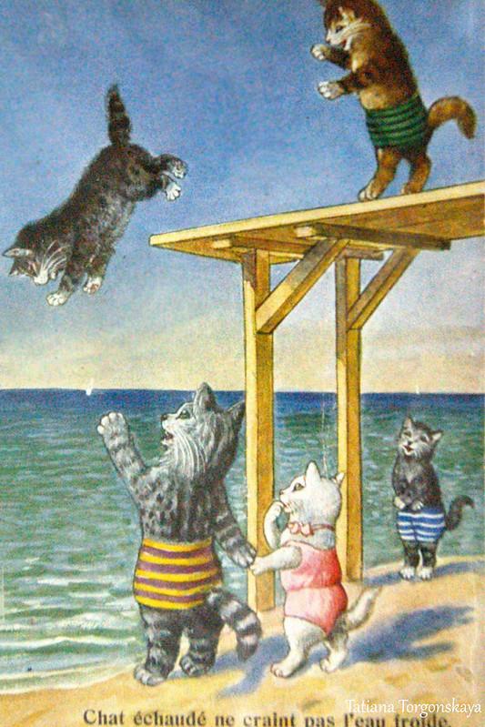 Открытка с котами на отдыхе