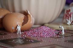 CSI: Cake, Sprinkles, Icing