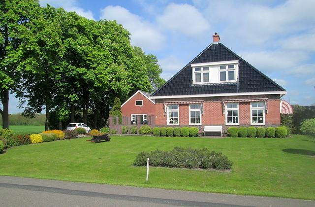 Dutch house + topiary