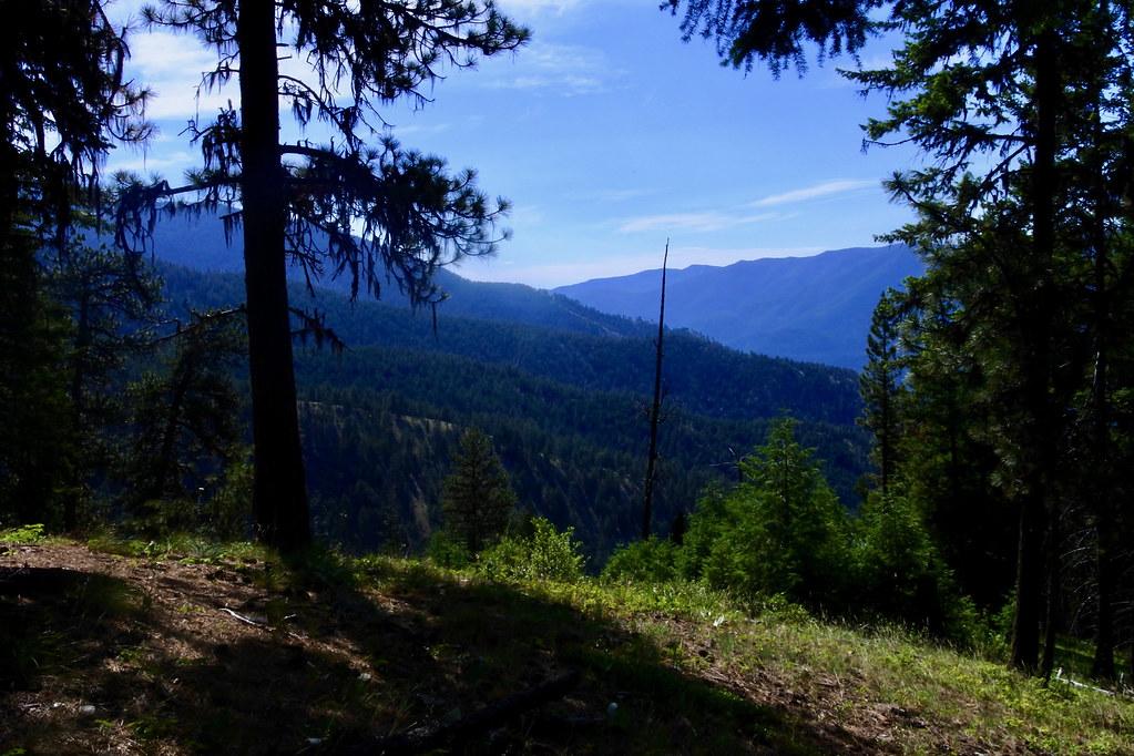Trail 205