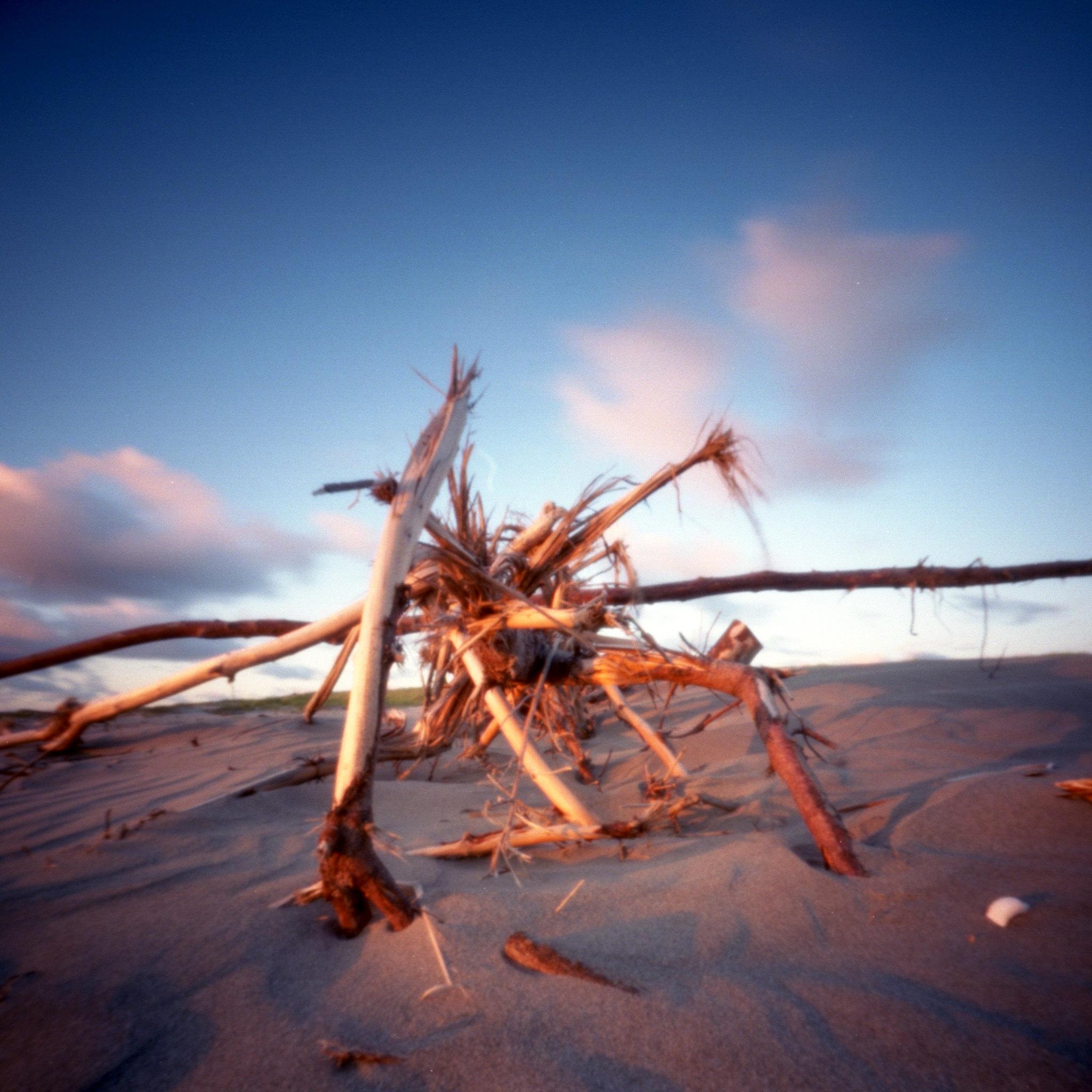 Beach Thing 1